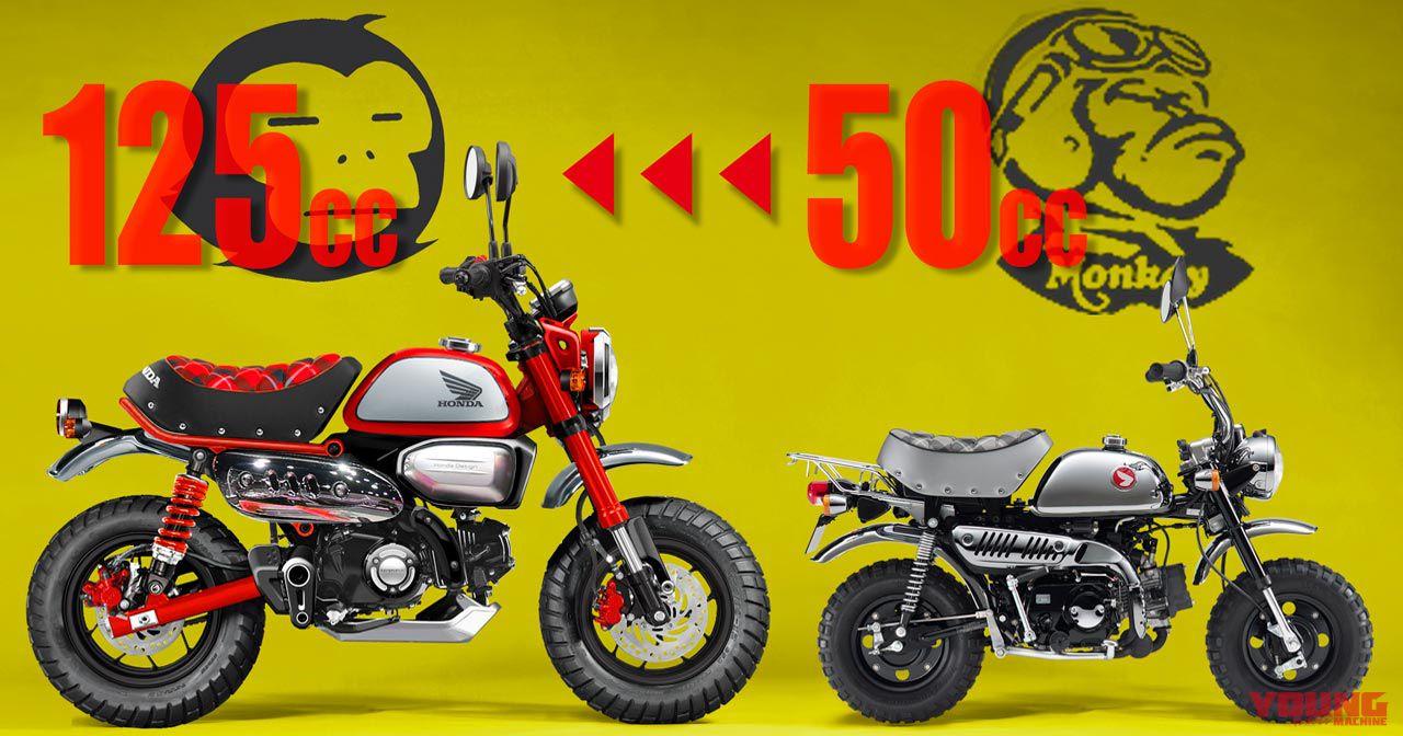 Monkey125_YMCG