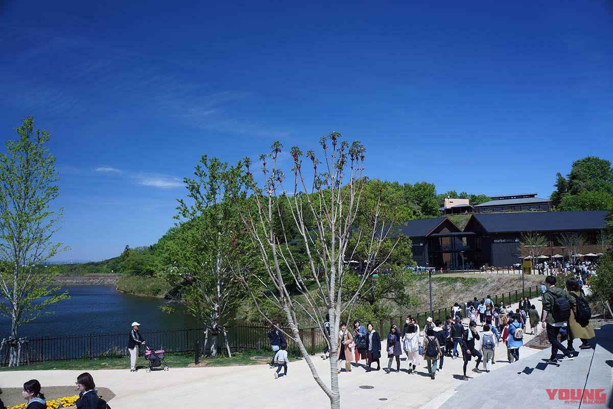 飯能市宮沢湖付近