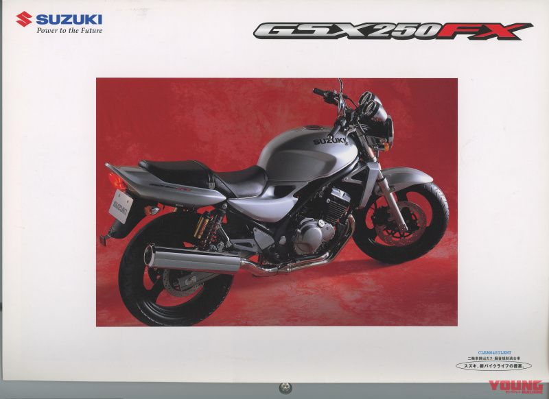 SUZUKI GSX250FX 2002