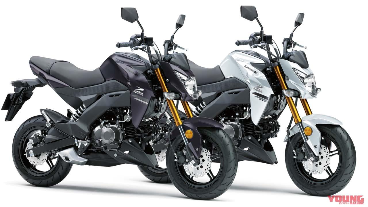 カワサキの原付二種「Z125 PRO」がカラー&グラフィック変更で2月1日発売に   WEBヤングマシン 最新バイク情報