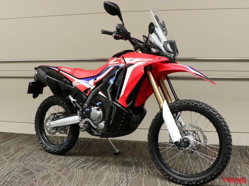 HONDA CRF250 RALLY [2019]